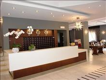Arion Hotel: Reception