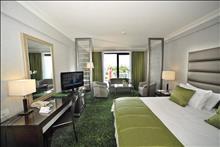 Radisson Blu Park Hotel : Business Room