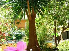 Alkionis Hotel: Garden