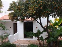 Oasis Hotel-Bungalows: Bungalows