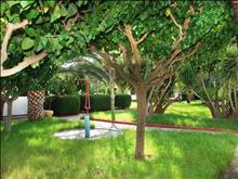 Alykes Park Bungalows & Apartments: Garden